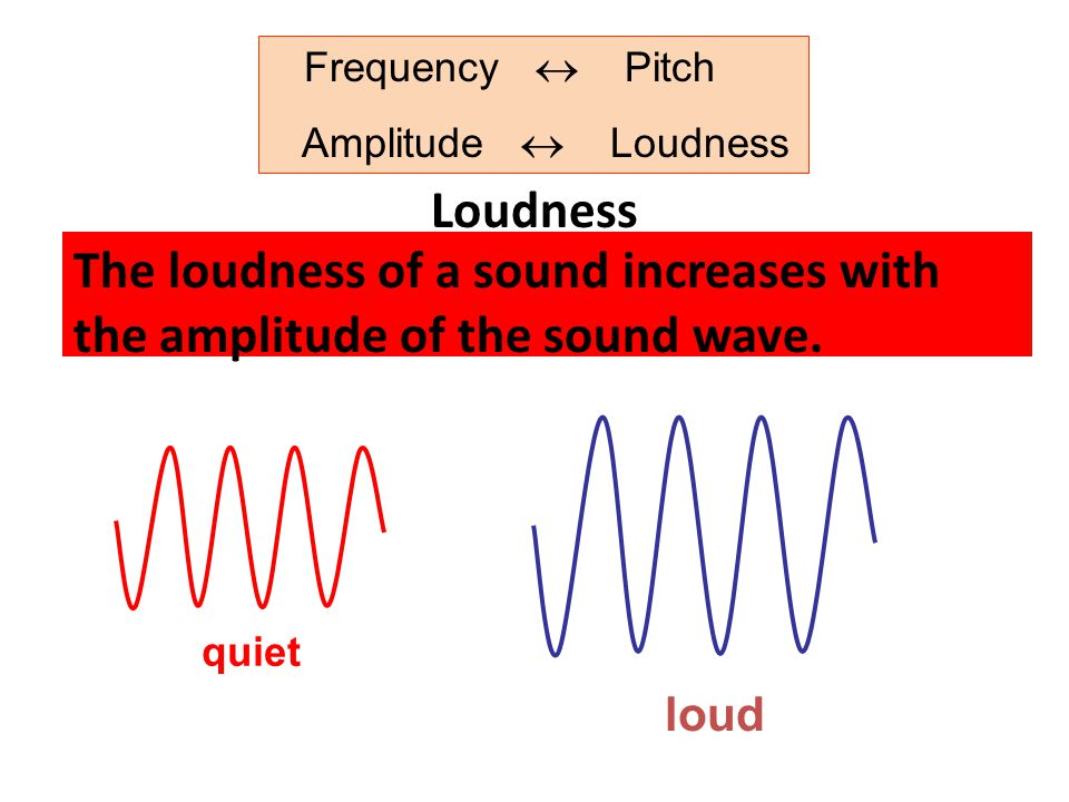 Frequency  Pitch Amplitude  Loudness Loudness The loudness of a sound increases with the amplitude of the sound wave.