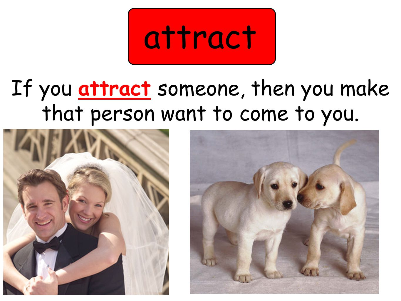 attract If you attract someone, then you make that person want to come to you.