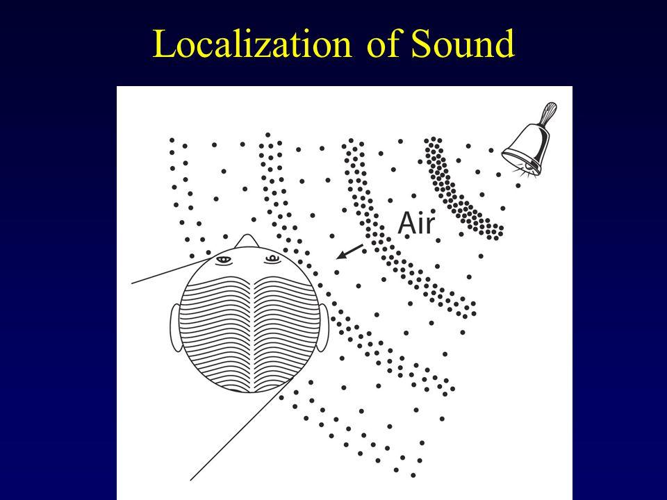 Localization of Sound