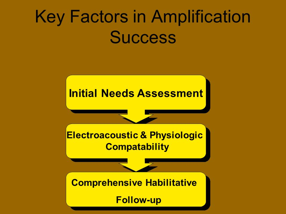 Key Factors in Amplification Success Initial Needs Assessment Electroacoustic & Physiologic Compatability Comprehensive Habilitative Follow-up