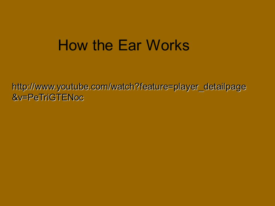 How the Ear Works http://www.youtube.com/watch?feature=player_detailpage &v=PeTriGTENoc