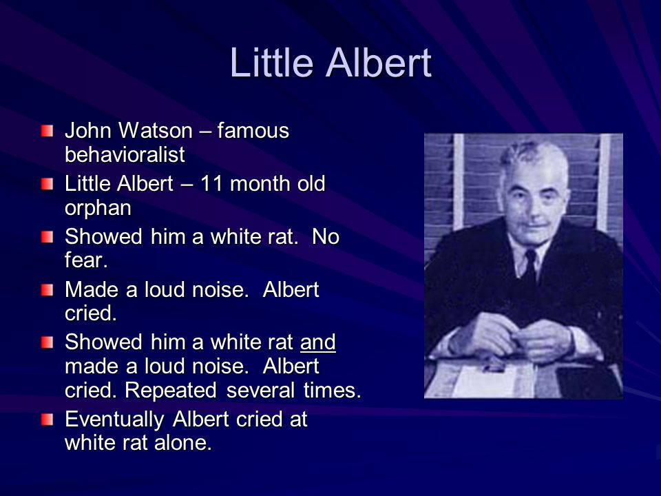 Little Albert John Watson – famous behavioralist Little Albert – 11 month old orphan Showed him a white rat.