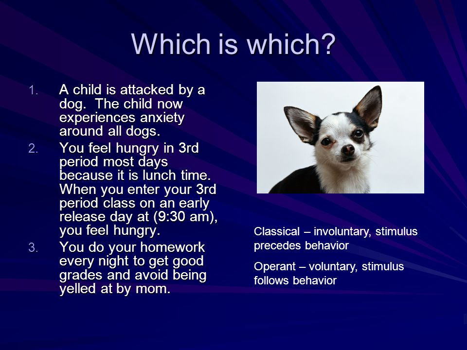 Which is which. 1. A child is attacked by a dog.