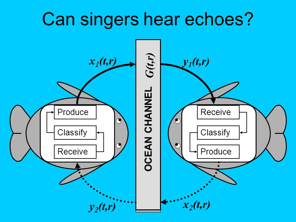 Produce Classify Receive Classify Produce OCEAN CHANNEL y 2 (t,r) y 1 (t,r) x 2 (t,r) x 1 (t,r) G(t,r) Can singers hear echoes