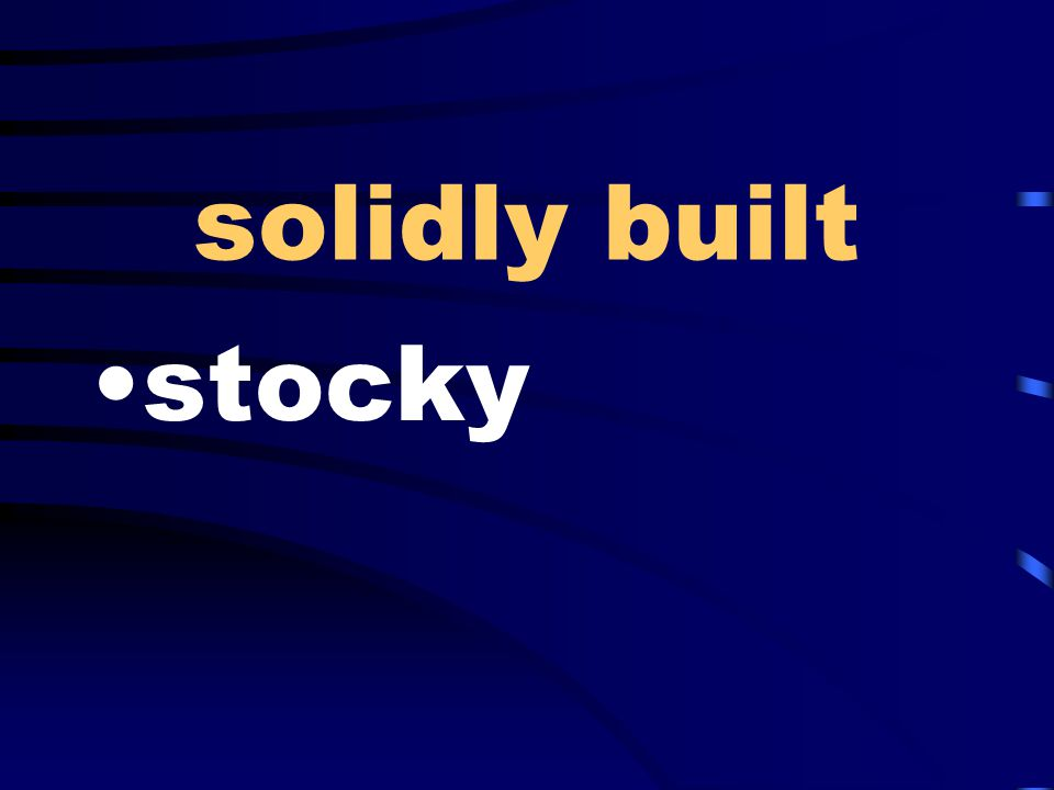 solidly built stocky