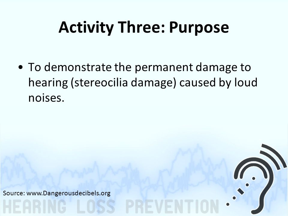 Activity Three: Purpose To demonstrate the permanent damage to hearing (stereocilia damage) caused by loud noises.