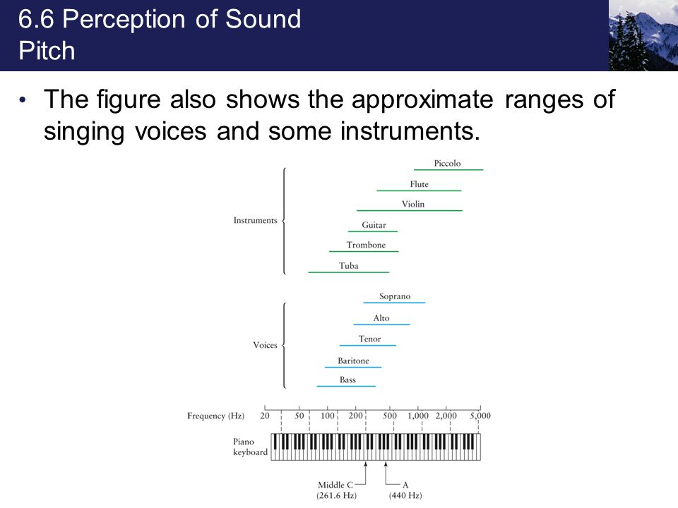6.6 Perception of Sound Pitch The figure also shows the approximate ranges of singing voices and some instruments.