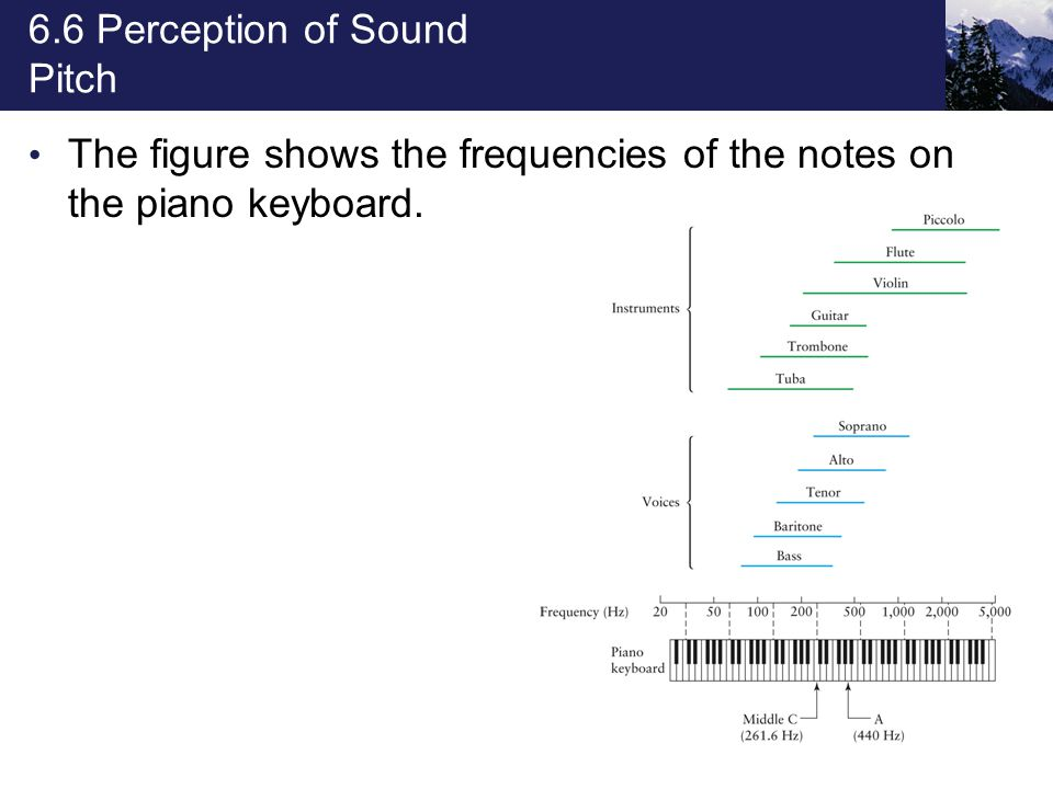 6.6 Perception of Sound Loudness Most sound-level meters are equipped with a special weighting circuit (called the A scale) that allows them to respond to sound much as the ear does.