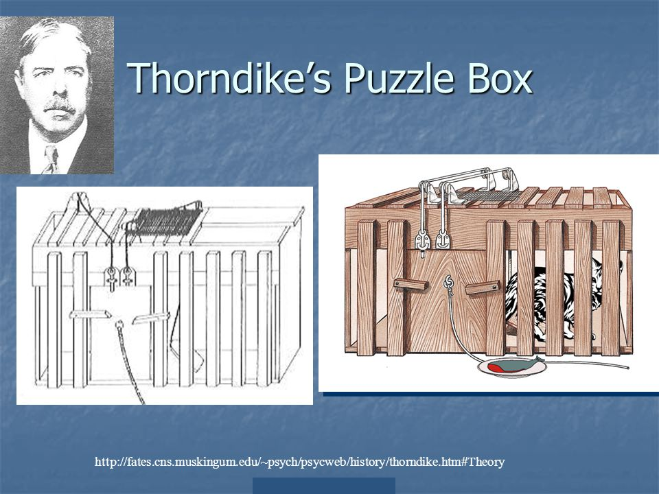 Thorndike's Puzzle Box http://fates.cns.muskingum.edu/~psych/psycweb/history/thorndike.htm#Theory