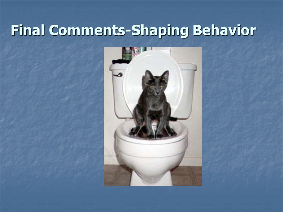Final Comments-Shaping Behavior
