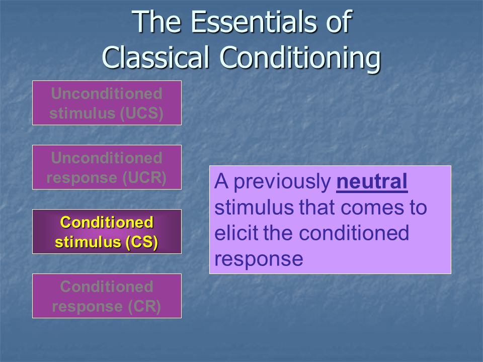 The Essentials of Classical Conditioning Unconditioned response (UCR) Unconditioned stimulus (UCS) Conditioned response (CR) Conditioned stimulus (CS) A previously neutral stimulus that comes to elicit the conditioned response