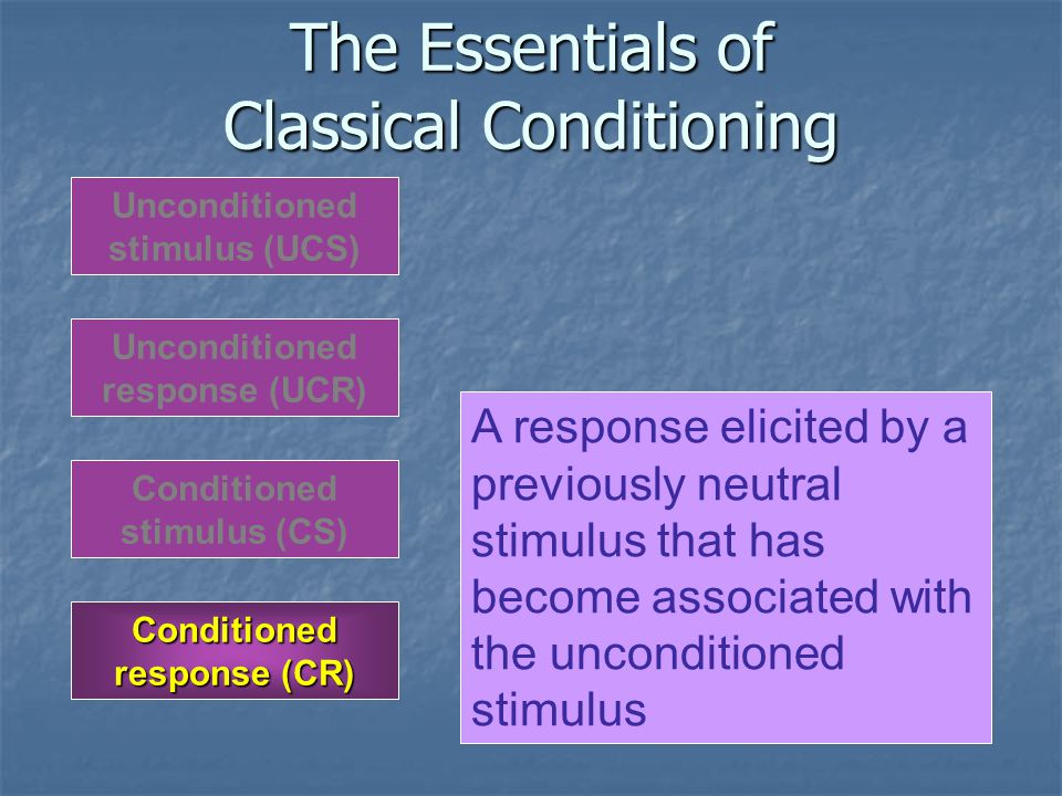 The Essentials of Classical Conditioning Unconditioned response (UCR) Unconditioned stimulus (UCS) Conditioned response (CR) Conditioned stimulus (CS) A response elicited by a previously neutral stimulus that has become associated with the unconditioned stimulus
