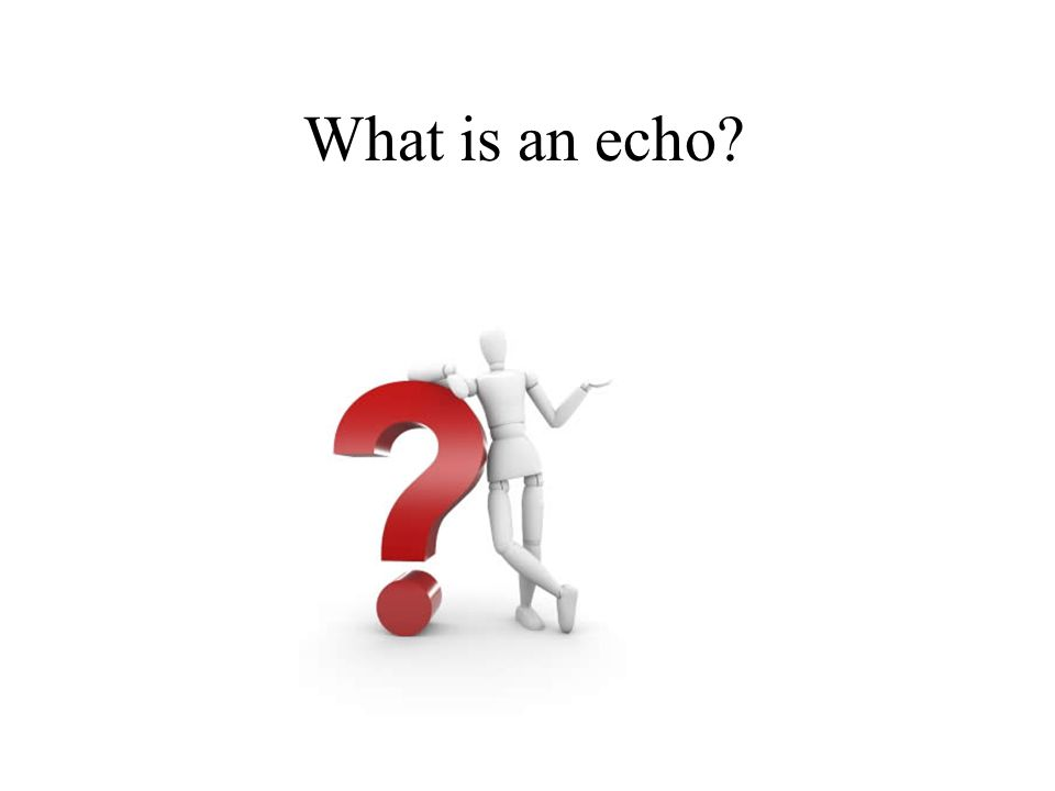 What is an echo