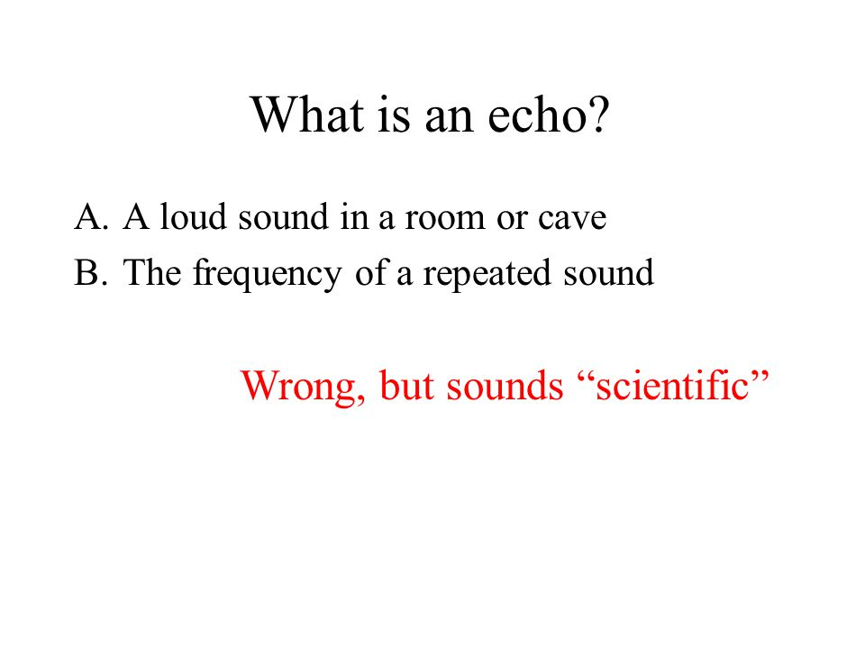 What is an echo.