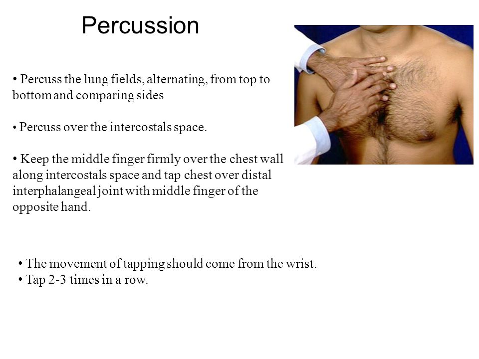 Percussion Percuss the lung fields, alternating, from top to bottom and comparing sides Percuss over the intercostals space. Keep the middle finger fi