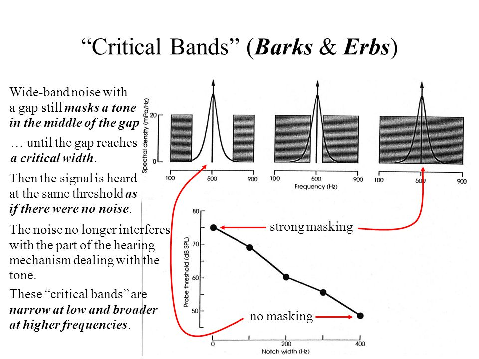 Critical Bands (Barks & Erbs) Wide-band noise with a gap still masks a tone in the middle of the gap … until the gap reaches a critical width.