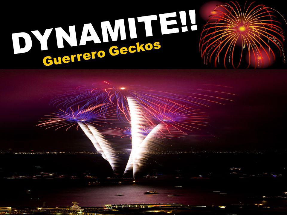 DYNAMITE!! Guerrero Geckos