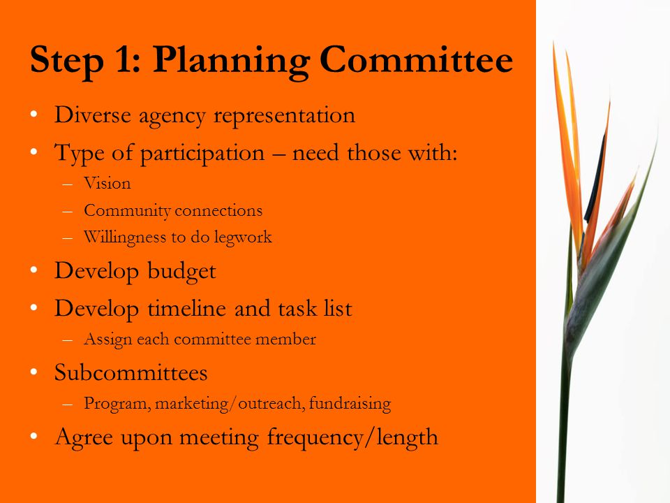Step 1: Planning Committee Diverse agency representation Type of participation – need those with: –Vision –Community connections –Willingness to do le