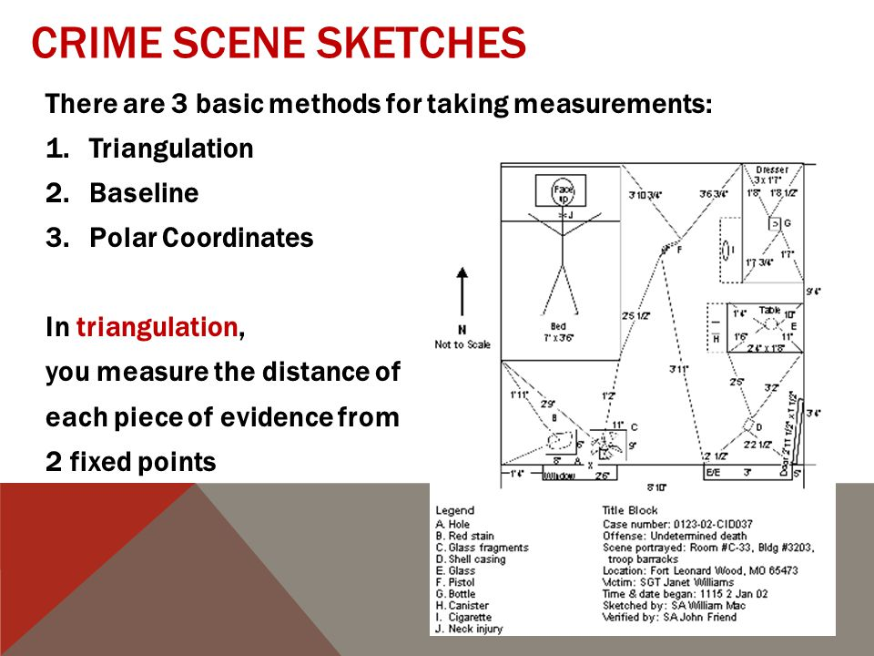 CRIME SCENE SKETCHES There are 3 basic methods for taking measurements: 1.Triangulation 2.Baseline 3.Polar Coordinates In triangulation, you measure the distance of each piece of evidence from 2 fixed points Evidence Fixed point Y Fixed point X