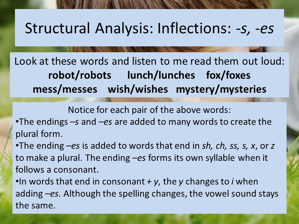 Structural Analysis: Inflections: -s, -es Look at these words and listen to me read them out loud: robot/robots lunch/lunches fox/foxes mess/messes wi