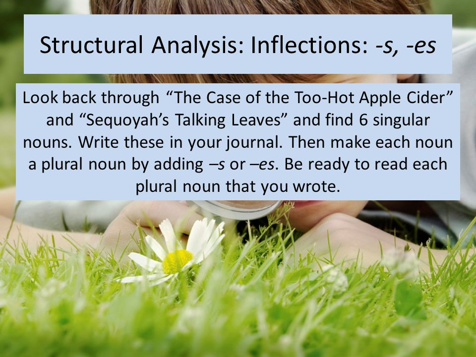 """Structural Analysis: Inflections: -s, -es Look back through """"The Case of the Too-Hot Apple Cider"""" and """"Sequoyah's Talking Leaves"""" and find 6 singular"""