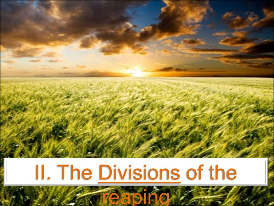 II. The Divisions of the reaping