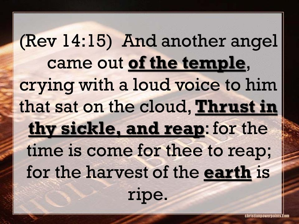 of the temple Thrust in thy sickle, and reap earth (Rev 14:15) And another angel came out of the temple, crying with a loud voice to him that sat on t