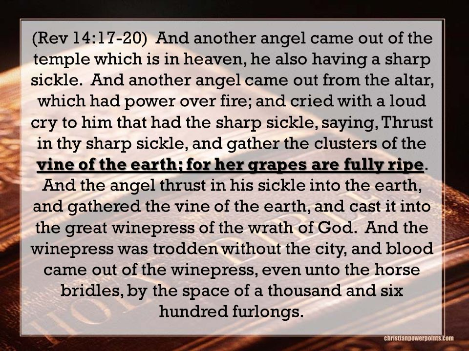 vine of the earth; for her grapes are fully ripe (Rev 14:17-20) And another angel came out of the temple which is in heaven, he also having a sharp sickle.