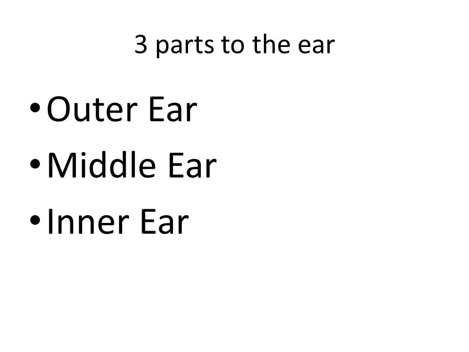 3 parts to the ear Outer Ear Middle Ear Inner Ear