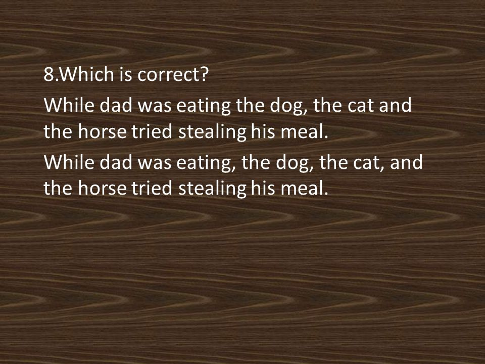 8.Which is correct. While dad was eating the dog, the cat and the horse tried stealing his meal.