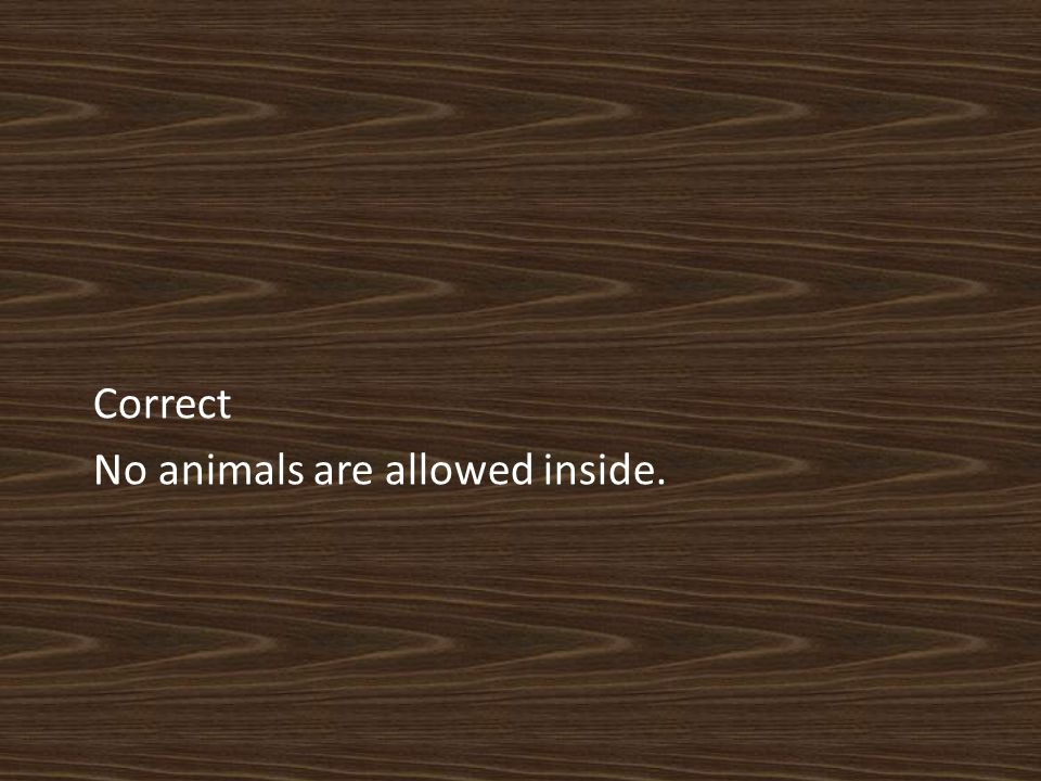 Correct No animals are allowed inside.