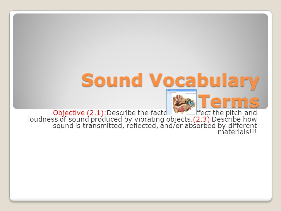 Sound Vocabulary Terms Objective (2.1):Describe the factors that affect the pitch and loudness of sound produced by vibrating objects.(2.3) Describe how sound is transmitted, reflected, and/or absorbed by different materials!!!