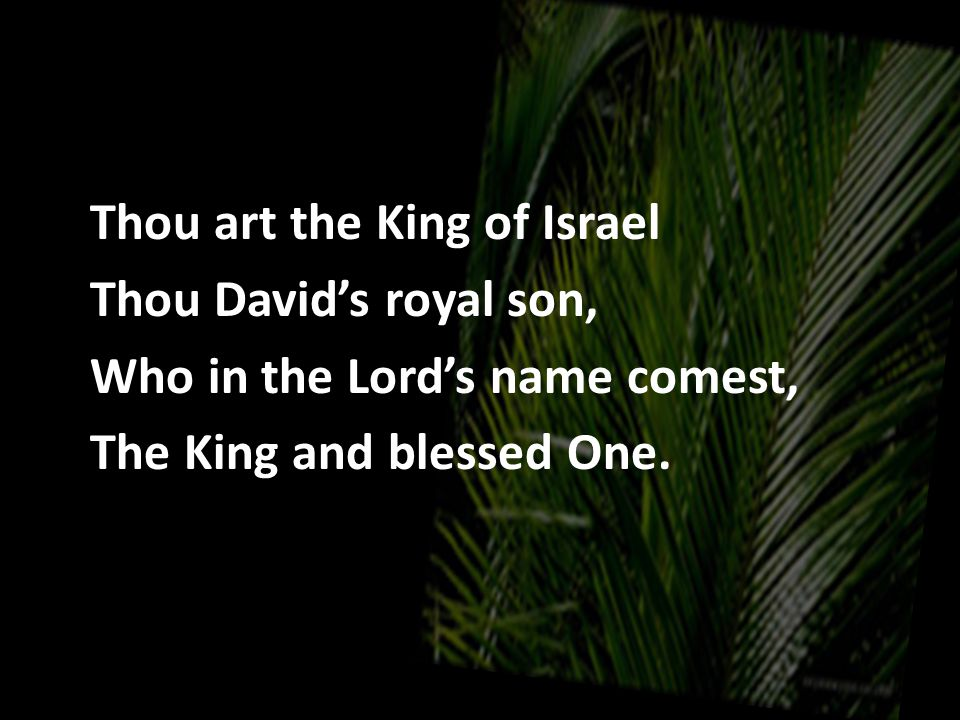 Thou art the King of Israel Thou David's royal son, Who in the Lord's name comest, The King and blessed One.