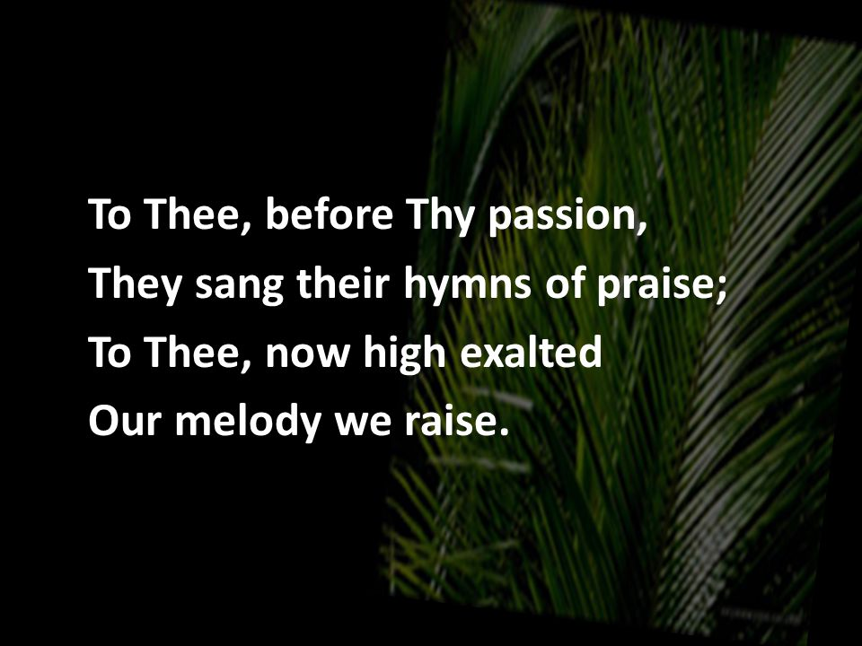 To Thee, before Thy passion, They sang their hymns of praise; To Thee, now high exalted Our melody we raise.
