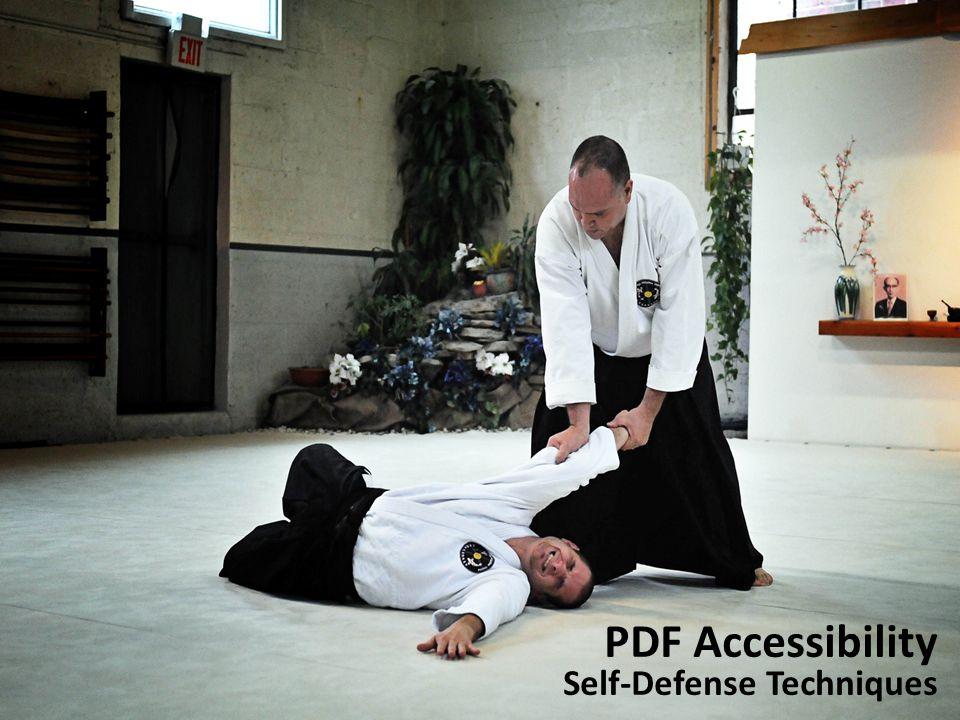 PDF Accessibility Self-Defense Techniques
