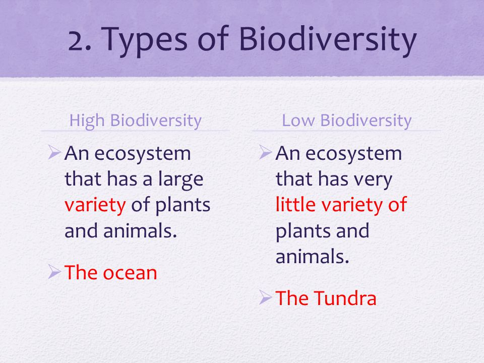 2. Types of Biodiversity High Biodiversity  An ecosystem that has a large variety of plants and animals.  The ocean Low Biodiversity  An ecosystem