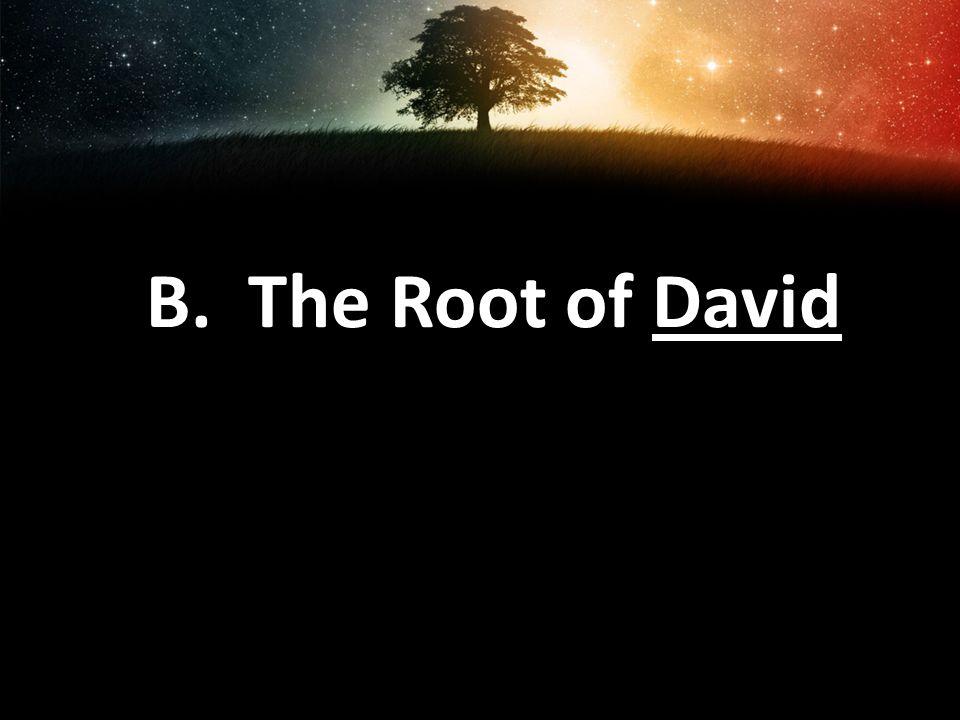 B. The Root of David
