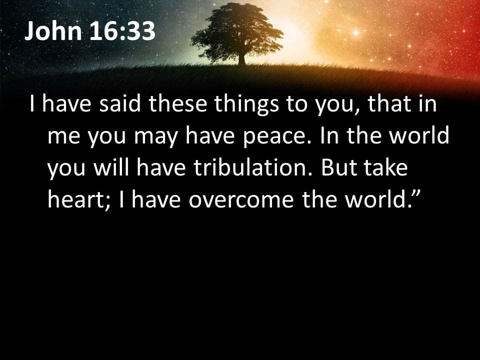 John 16:33 I have said these things to you, that in me you may have peace.