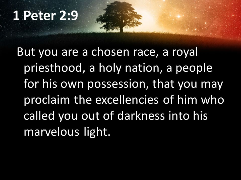 1 Peter 2:9 But you are a chosen race, a royal priesthood, a holy nation, a people for his own possession, that you may proclaim the excellencies of him who called you out of darkness into his marvelous light.