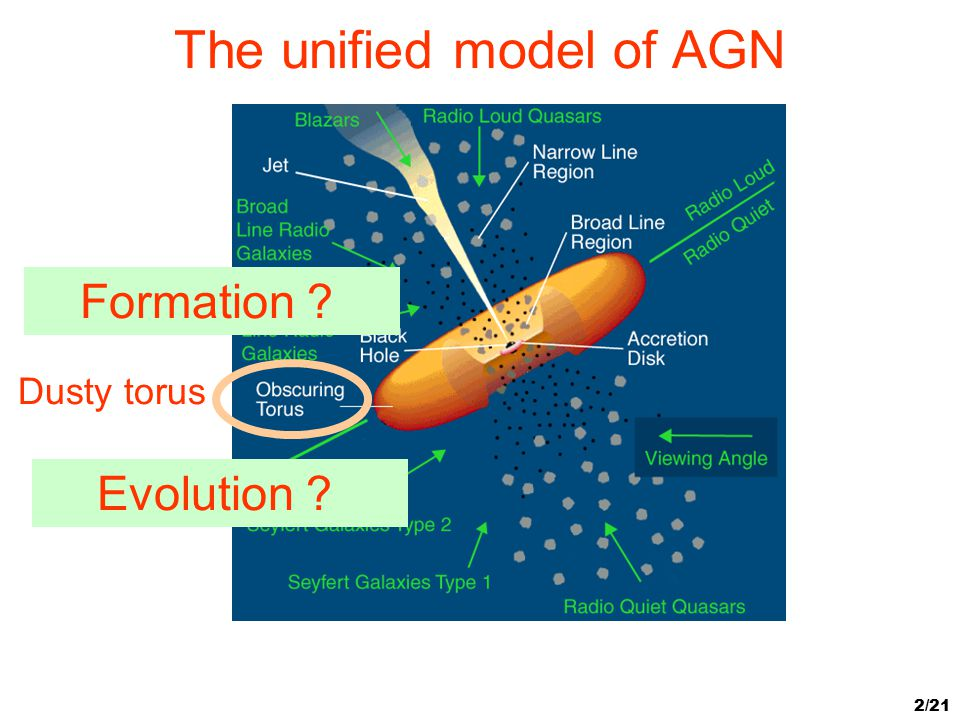 2/21 The unified model of AGN Dusty torus Formation ? Evolution ?