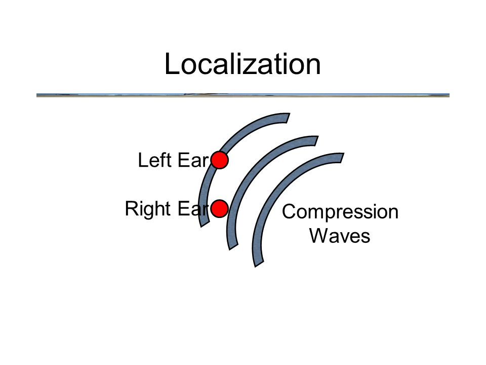 Left Ear Right Ear Compression Waves