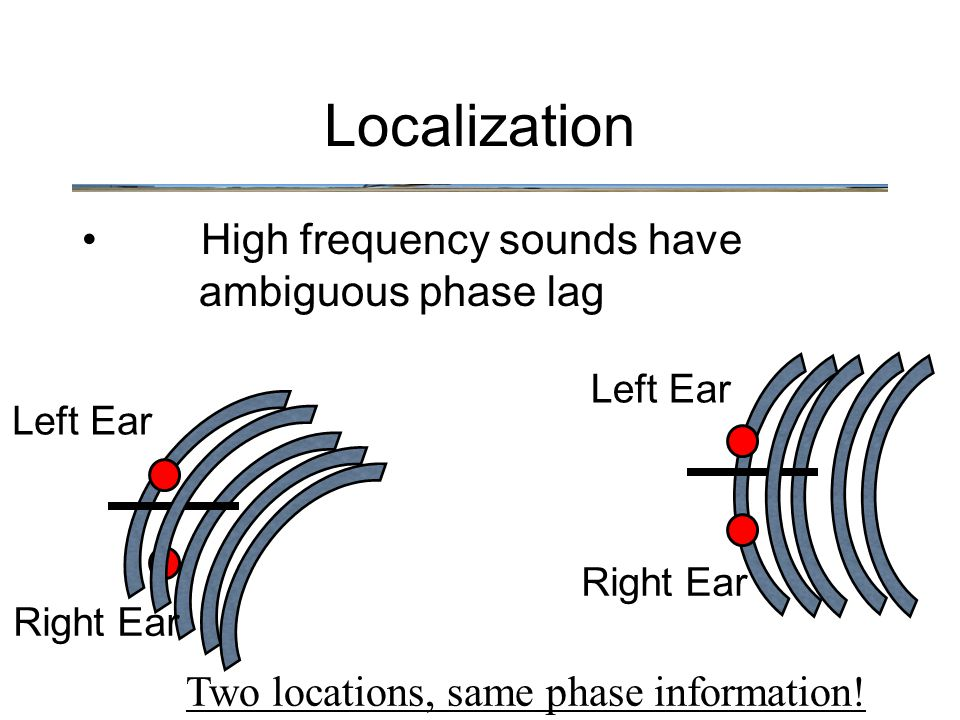 High frequency sounds have ambiguous phase lag Localization Left Ear Right Ear Left Ear Right Ear Two locations, same phase information!
