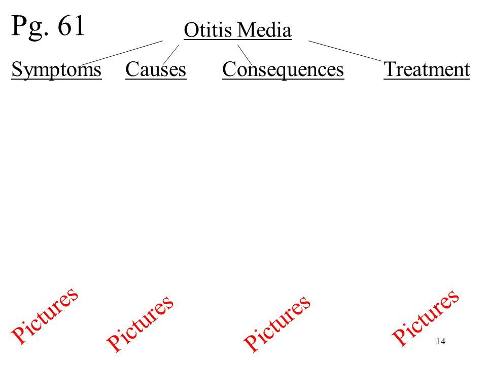 14 Otitis Media Symptoms Causes Consequences Treatment Pg. 61 Pictures