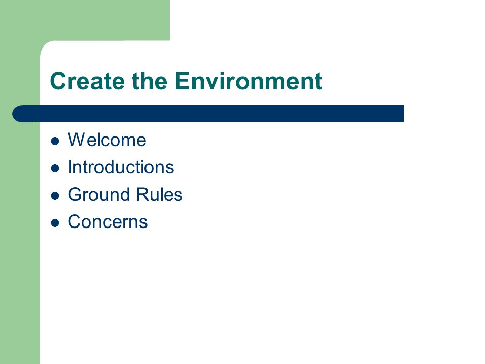 Create the Environment Welcome Introductions Ground Rules Concerns