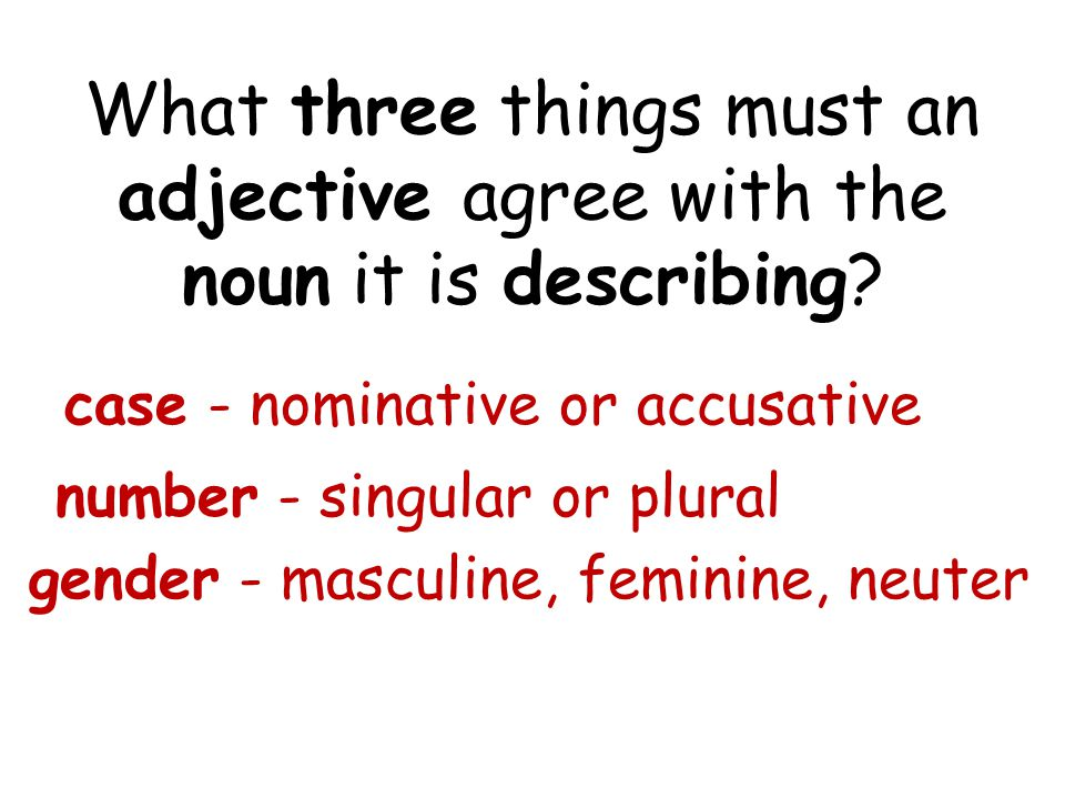 What three things must an adjective agree with the noun it is describing? case - nominative or accusative number - singular or plural gender - masculi
