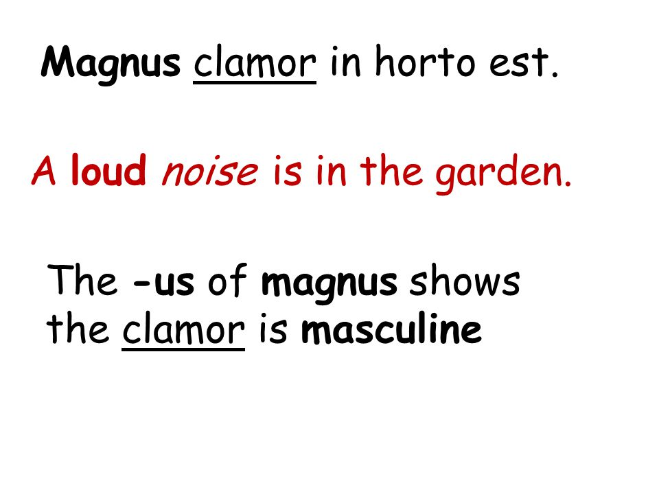 Magnus clamor in horto est. A loud noise is in the garden. The -us of magnus shows the clamor is masculine
