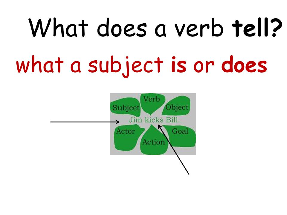What does a verb tell? what a subject is or does