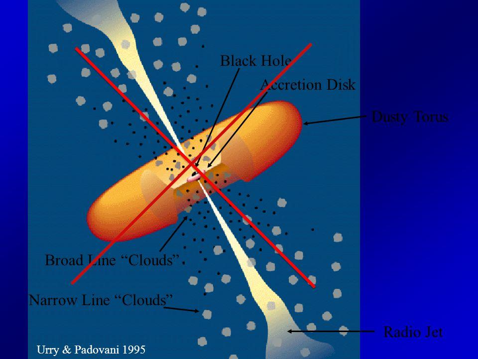 Urry & Padovani 1995 Black Hole Accretion Disk Broad Line Clouds Narrow Line Clouds Radio Jet Dusty Torus