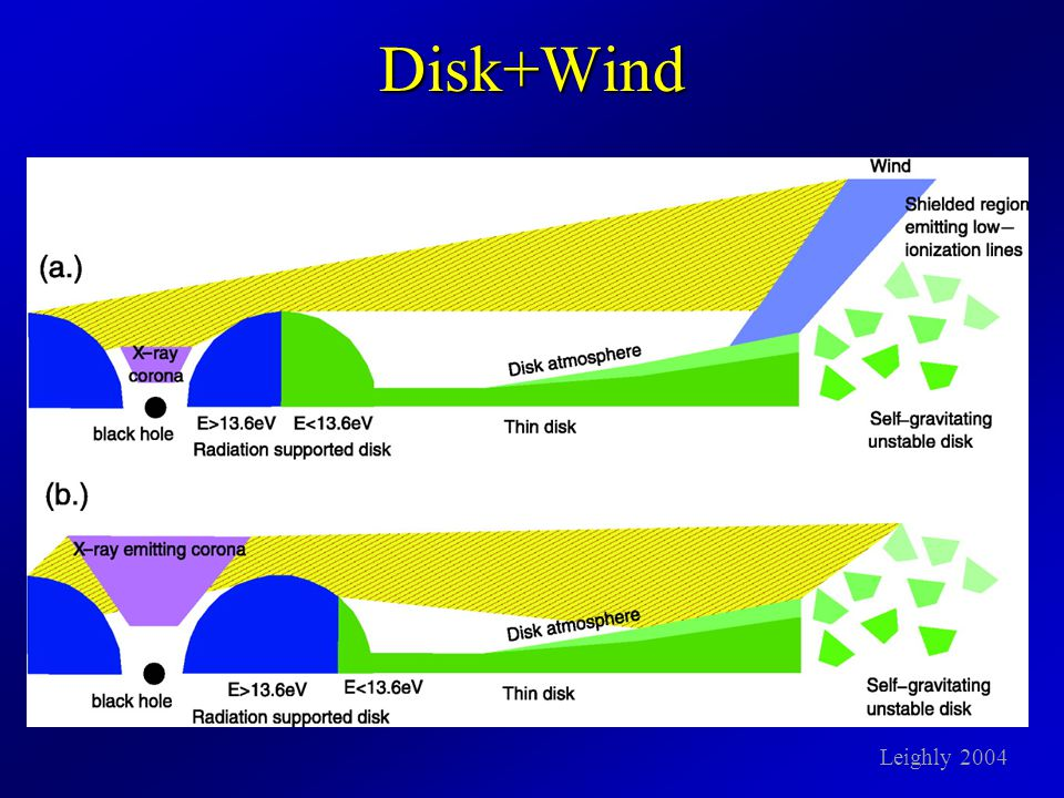 Disk+Wind Leighly 2004