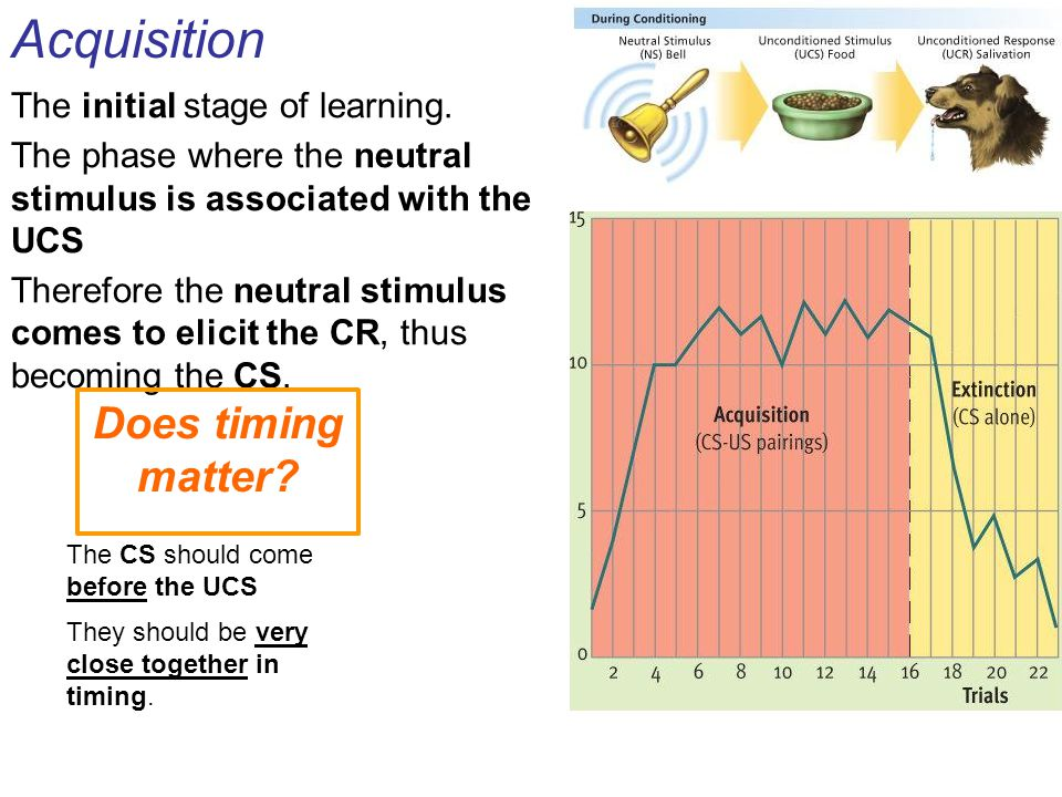 Acquisition The initial stage of learning. The phase where the neutral stimulus is associated with the UCS Therefore the neutral stimulus comes to eli